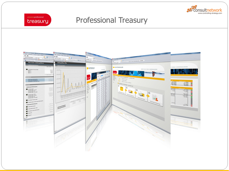 Professional Planner Treasury